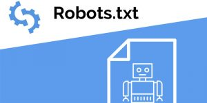 فایل robots.txt چیست؟ – اهمیت، کاربرد و نحوه ساختن robots.txt